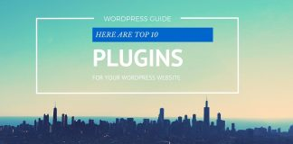 top 10 wordpress plugin