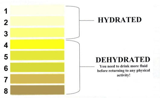 how to make yourself hydrated