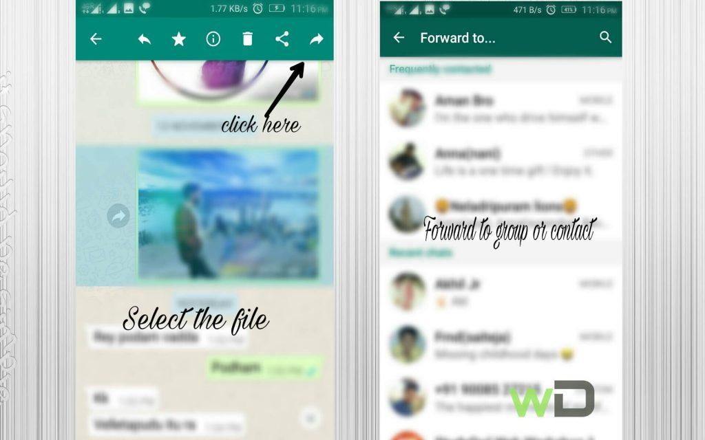 whatsapp secrets