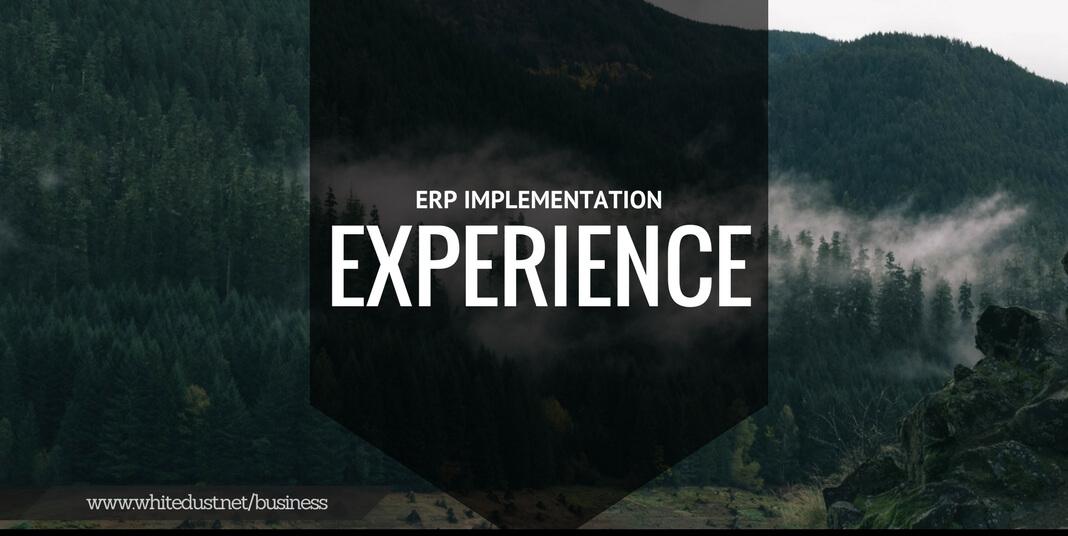 ERP IMPLEMEMNT (2)