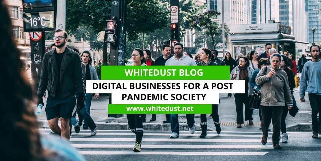 Digital Businesses for a Post Pandemic Society