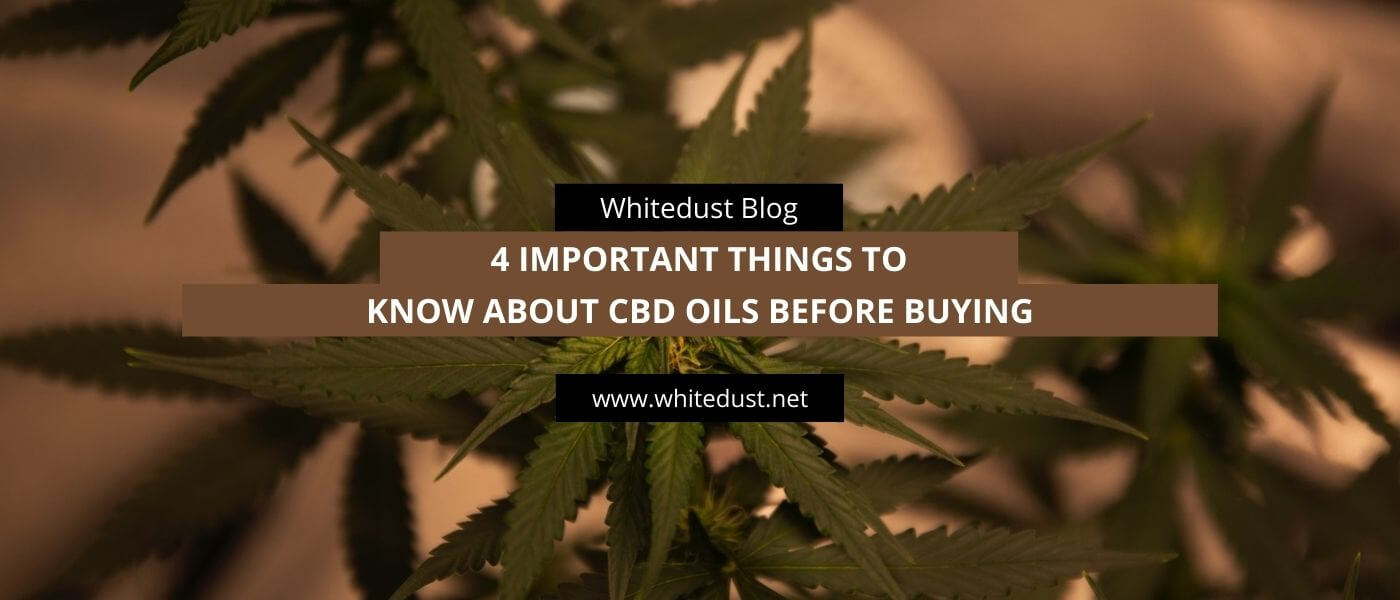 4 Important Things to Know About CBD Oils Before Buying